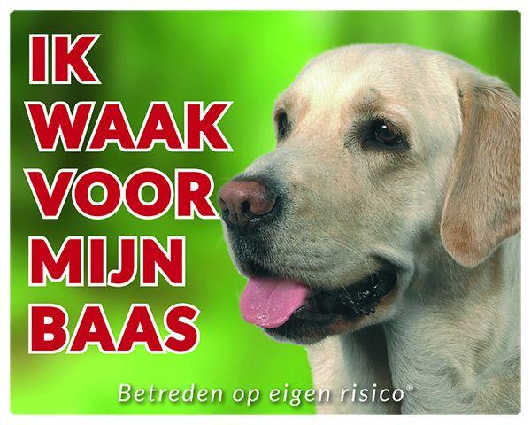 Labrador-blond-GR.jpg