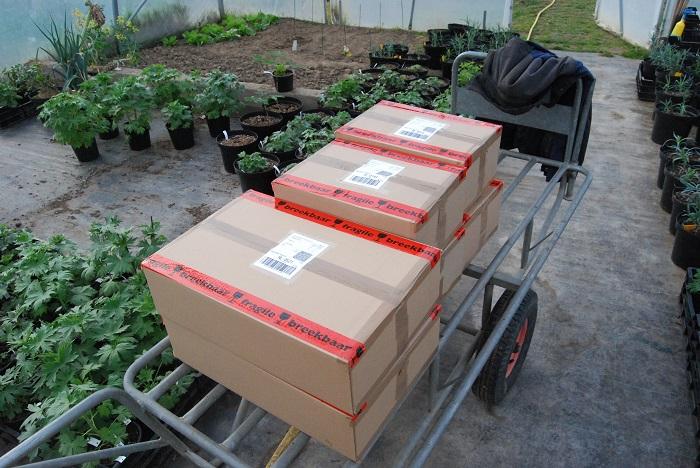 versturen planten per post