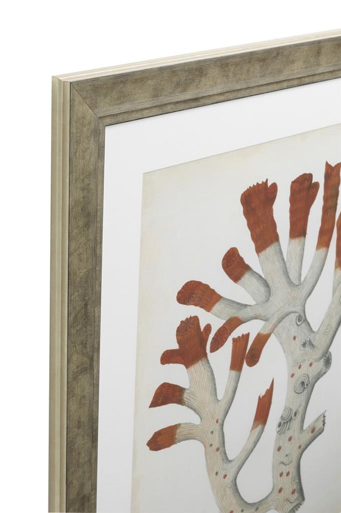 Eichholtz Prints Antique red corals set of 6.