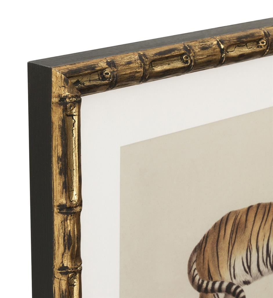 Eichholtz Prints Lion, Tigre, Jaguar set of 6.