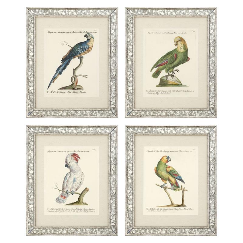 Eichholtz Prints Dunbar I Set Of 4