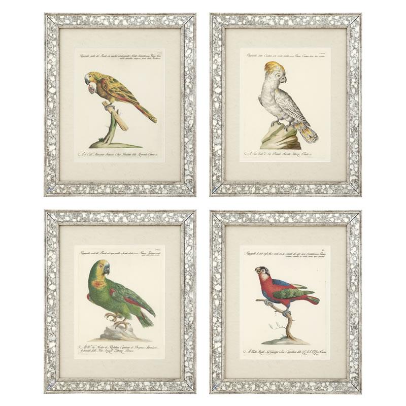 Eichholtz Prints Dunbar 2 Set Of 4