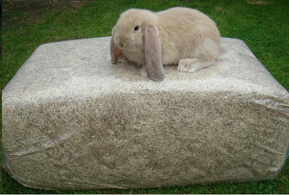 konijnen Vlasstrooisel  18 kilo baal!