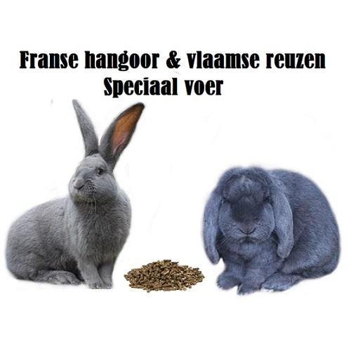 Fransehangoren en vlaamsereuzen voer emmer<h1>&#160;</h1>