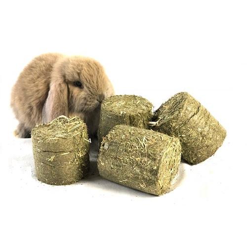 konijnen hooi blok