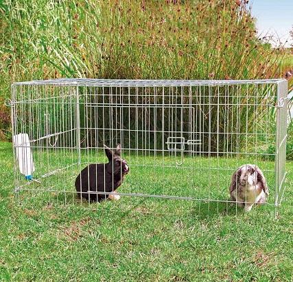 konijnen draadren met dak