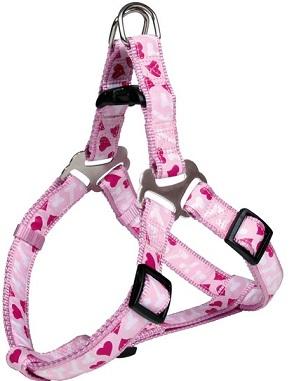 Konijnen tuig roze hartjes .