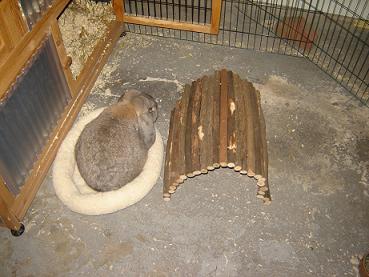 rond schapen konijnen bed