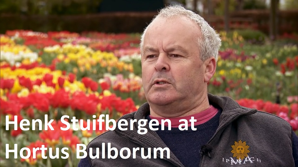 Henk Stuifbergen at Hortus Bulborum