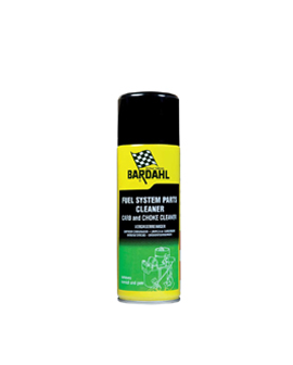 Fuel System Parts Cleaner (Carb 'n Choke Cleaner)