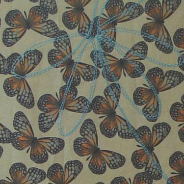 Tafelloper Butterfly