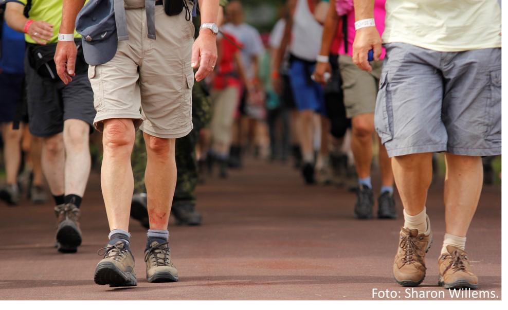 benen van een groep wandelaars, foto Sharon Willems