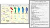 Anatomie poster voet en voetafwijkingen (Nederlands, gelamineerd, A4)