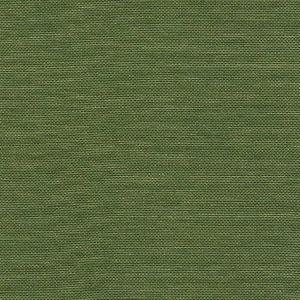 Bonaire 020 Moss-Green