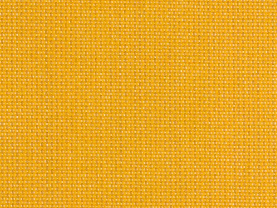 Solids 3938 Mimosa