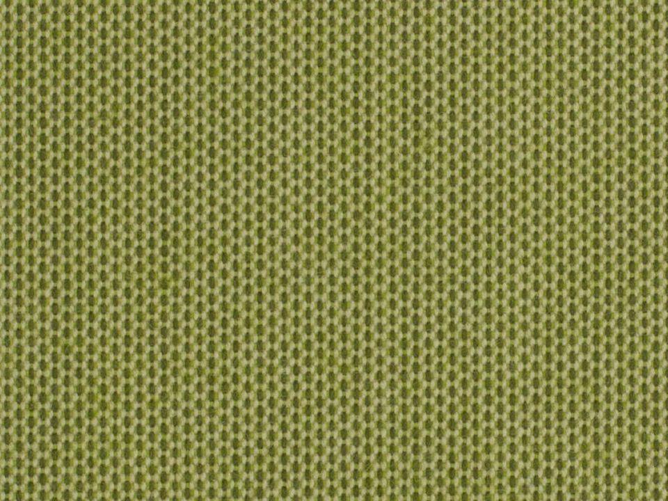Solids 3970 Lichen