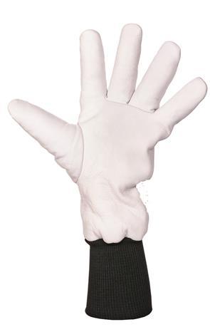 Diepvrieshandschoen*ACTIE