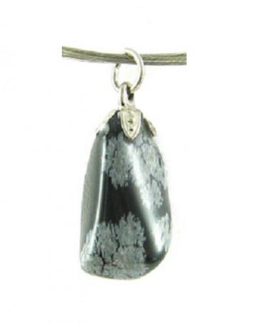 https://myshop.s3-external-3.amazonaws.com/shop5846800.pictures.obsidiaan-sneeuwvlok-edelsteen-hanger.jpg