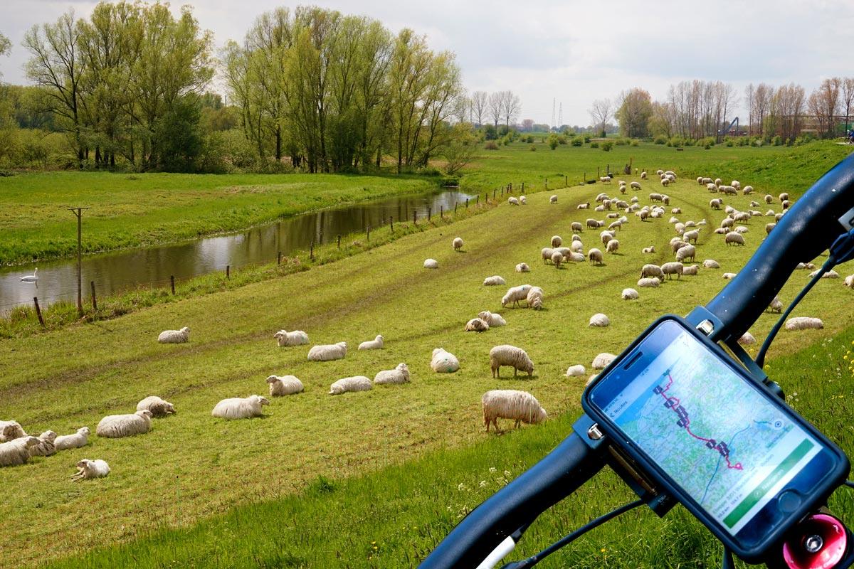 Shortcode Fietserpad traject 3 Waddenzee - Nederrijn