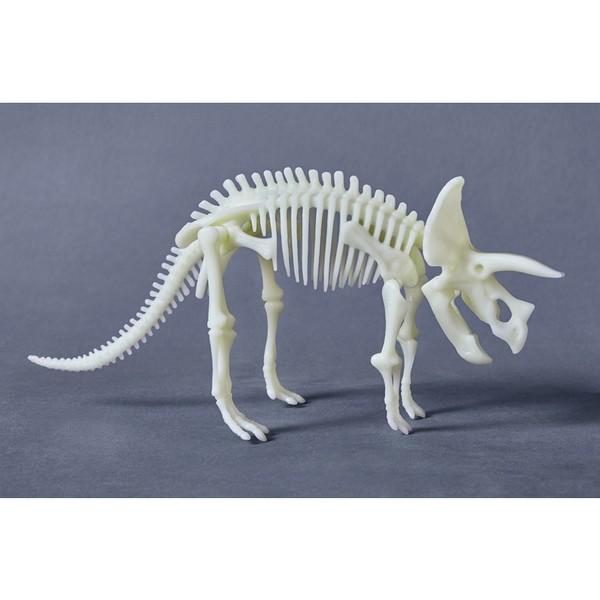 Terra Kids Bouwpakket Triceratops
